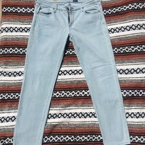 Adriano Goldschmied (AG) The Stevie Ankle jeans 32